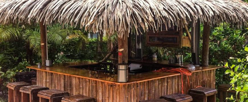 Tiki / Palapa Bar - Synthetic Thatch - Private Residence