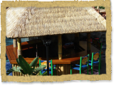 synthetic thatch tiki bar in Florida
