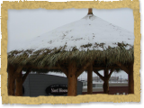 Snow on palm thatch