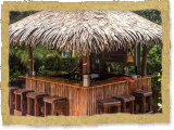tiki bar palapa thatched tropical bar