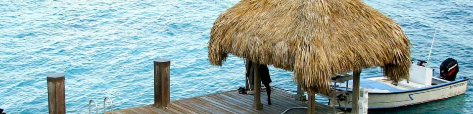 Palapa shade structure on dock