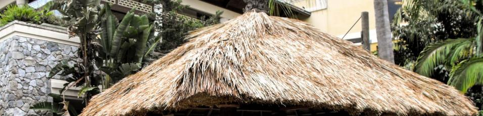 Palapa shade structure