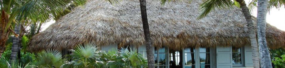 Tiki Hut Palapa Bali Thatched Roof