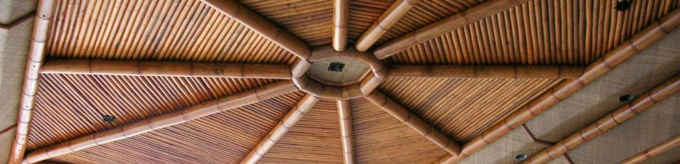 bamboo themed ceiling